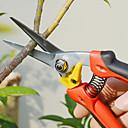 赤いハンドルスティックフルーツ切削工具とsellery剪定ばさみガーデン鋏