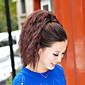 visoke kvalitete modni lijepa smeđa Tiger vruće kukuruza clip rep
